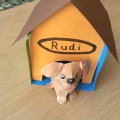 Hund Aus Papier Basteln Im Kidswebde